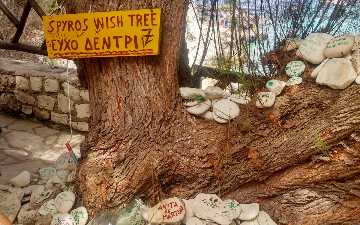 """Wish Tree"" on Greek island of Antipaxos becomes tourist attraction!"